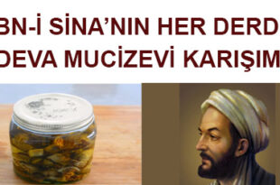 ibnii-sina-kuru-incir-zeytinyagi